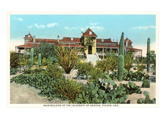 University of Arizona at Tucson, Cactus Garden--Art Print