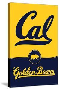 UNIVERSITY OF CALIFORNIA - BERKELEY poster 18