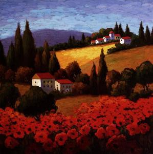 Tuscan Poppies by Unknown