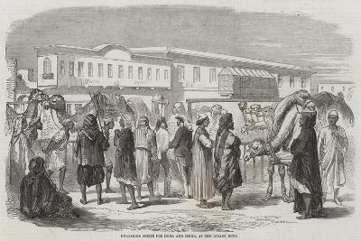 Unloading Specie for India and China, at the Wharf, Suez--Giclee Print
