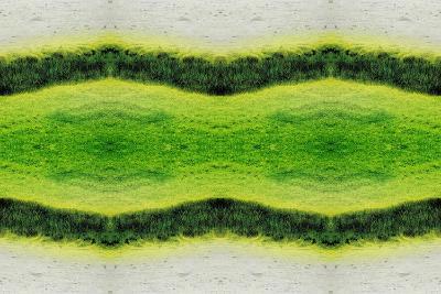 Unnatural 2.1-Giovanni Cafagna-Giclee Print