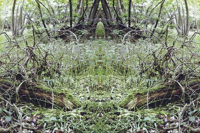 Unnatural 33-Giovanni Cafagna-Giclee Print