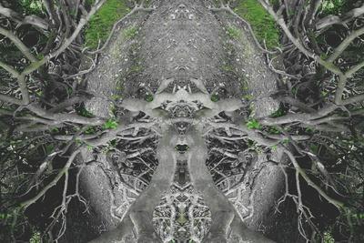 https://imgc.artprintimages.com/img/print/unnatural-42_u-l-pjh05a0.jpg?p=0
