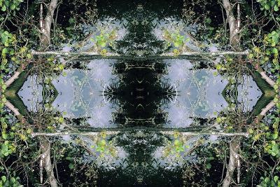 Unnatural 73-Giovanni Cafagna-Giclee Print