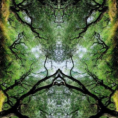 Unnatural 75-Giovanni Cafagna-Giclee Print