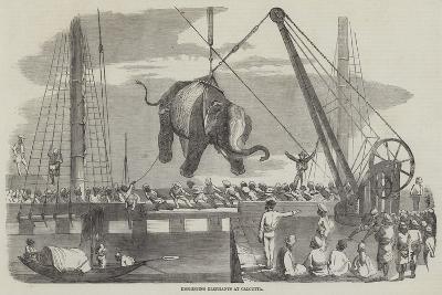Unshipping Elephants at Calcutta--Giclee Print