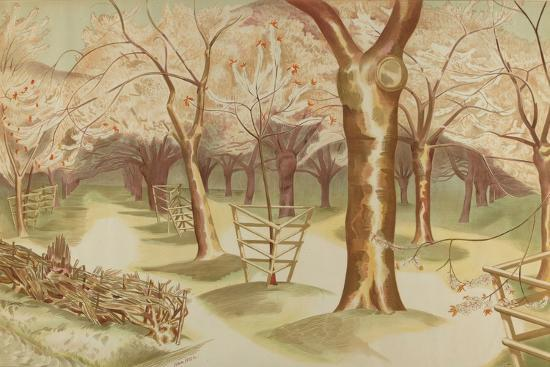 Untitled, from the Series 'Home Gardens for Home Markets', 1930-John Northcote Nash-Giclee Print