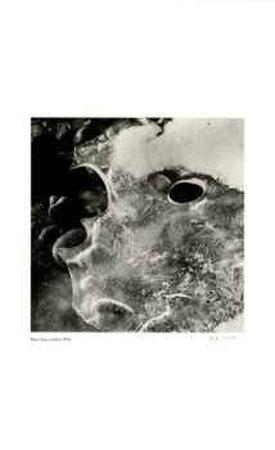 https://imgc.artprintimages.com/img/print/untitled-melting-ice_u-l-eryi30.jpg?p=0
