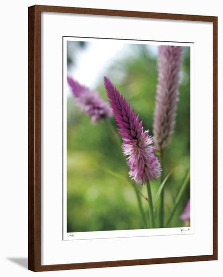 Untitled Purple-John Gynell-Framed Giclee Print