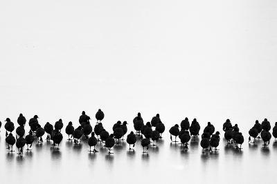 Untitled-Yordan Vasilev-Photographic Print
