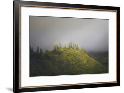 Untitled-Jason Matias-Framed Premium Photographic Print