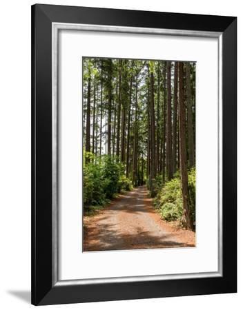Untitled-THE Studio-Framed Premium Photographic Print