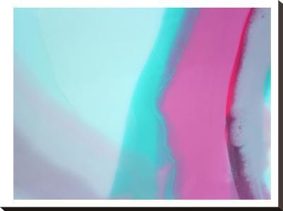 Up Close & Pink 2-Deb McNaughton-Stretched Canvas Print