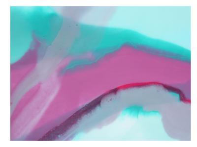 Up Close & Pink-Deb McNaughton-Art Print