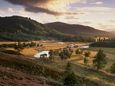 Upper Dee Valley Near Inverey, Deeside, Aberdeenshire, Scotland, United Kingdom, Europe-Patrick Dieudonne-Photographic Print