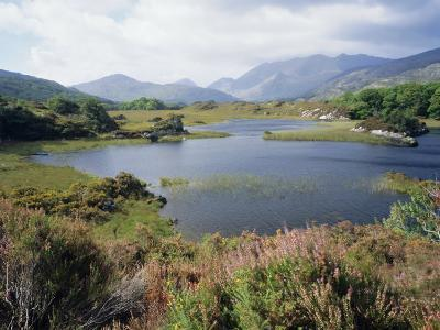 Upper Lake and Macgillycuddy's Reeks, Ring of Kerry, Killarney, Munster, Republic of Ireland (Eire)-Roy Rainford-Photographic Print