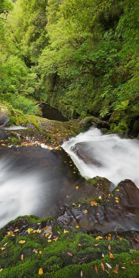 Upper Mclean Falls, Catlins, Southland South Island, New Zealand-Rainer Mirau-Photographic Print