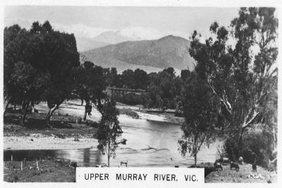 Upper Murray River, Victoria, Australia, 1928--Giclee Print