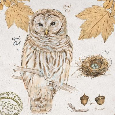 Ural Owl-Chad Barrett-Art Print