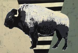 Bison by Urban Soule