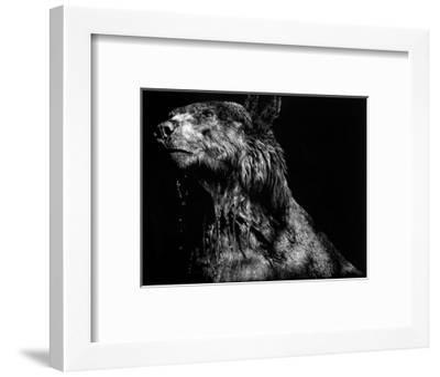 Ursa Major-Julie T. Chapman-Framed Art Print