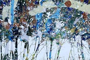 4 Seasons - Winter by Ursula Abresch