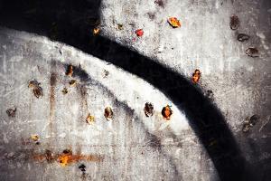 A Walk in Fall by Ursula Abresch