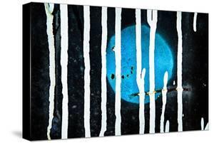 Blue Moon by Ursula Abresch