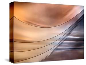 Curtain by Ursula Abresch