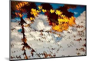 Deconstructed Fall 2 by Ursula Abresch