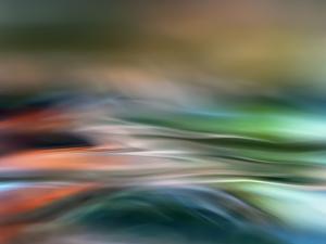 Drifting by Ursula Abresch