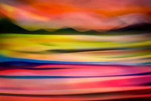Electric Slocan by Ursula Abresch