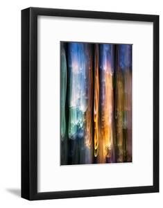 Evening Cedars by Ursula Abresch