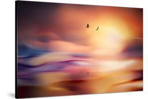 Evening Flight by Ursula Abresch