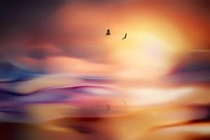 Evening Flight by Ursula Abresch