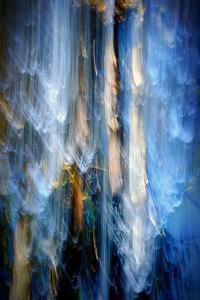 Evening Trees 1 by Ursula Abresch