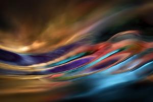 I Dream of Wild Places by Ursula Abresch