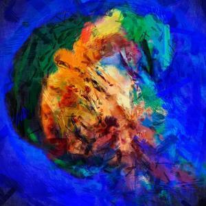 Jellyfish by Ursula Abresch
