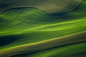 Landwriting 6 by Ursula Abresch