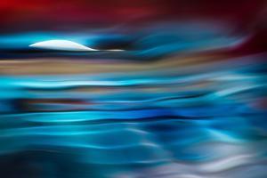 Moonlit by Ursula Abresch