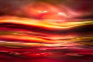 Morning Birds by Ursula Abresch