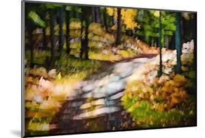 October Walk by Ursula Abresch