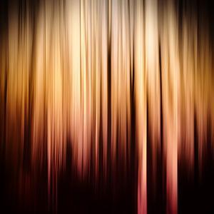 On Fire by Ursula Abresch