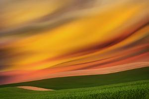 Palouse Abstract 2 by Ursula Abresch
