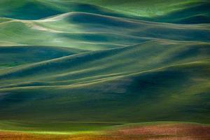 Palouse Hills by Ursula Abresch