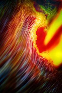 Phoenix 1 by Ursula Abresch