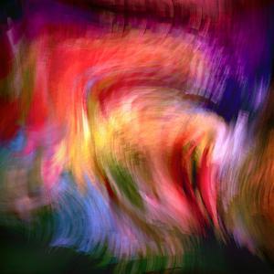 Phoenix 2 by Ursula Abresch