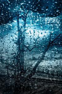 So Cold! by Ursula Abresch