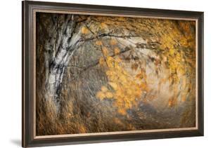 Spirit of Autumn by Ursula Abresch