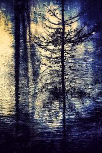 Spring Melt by Ursula Abresch